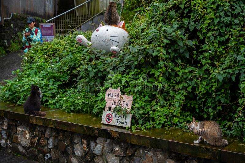 Houtong cat village. Taiwan famous cat population. stock images