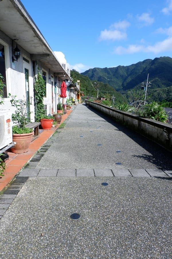 Cat village stock image