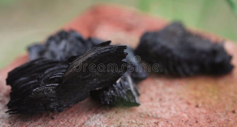 Houtskool voor Barbecue royalty-vrije stock afbeelding