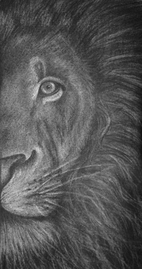 Houtskooltekening van helft-hoofd van een leeuw, katachtig portret van wild dier in zwart-wit, royalty-vrije stock foto's