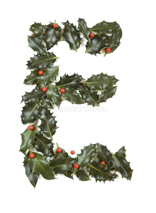 Houx avec la lettre E de baie images stock