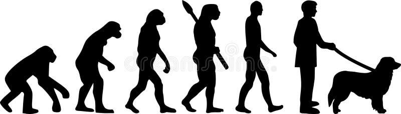 Hovawart ewolucji sylwetka royalty ilustracja