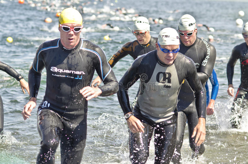 hove triathlon royaltyfri fotografi