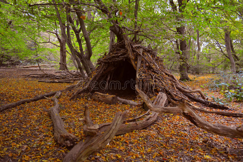 Hovel в древесинах стоковые изображения rf