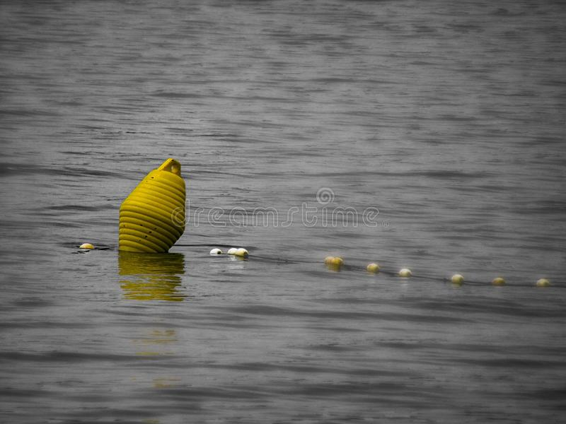 How cool is that. Boa, yellow, sea, seaside, medulin, croatia royalty free stock images