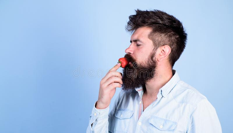 That is how tastes summer. Man handsome hipster with long beard eating strawberry. Hipster enjoy juicy ripe red royalty free stock photos