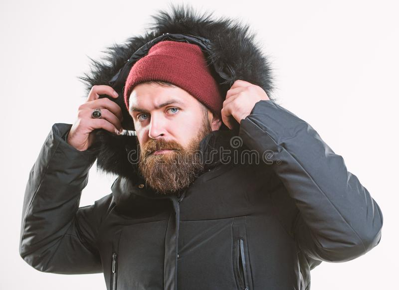 How to choose best winter jacket. Winter season menswear. Weather resistant jacket concept. Man bearded stand warm. Jacket parka isolated on white background stock photography