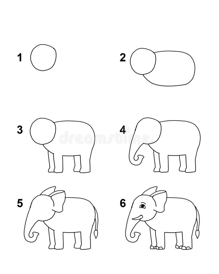 How To Draw Elephant Step By Step Cartoon Illustration With White