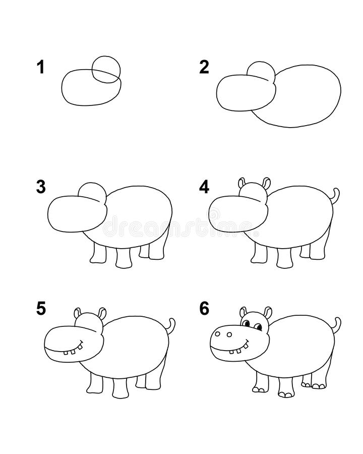 Free How To Draw Hippo With 6 Step Cartoon Illustration With White Background Stock Image - 181547371