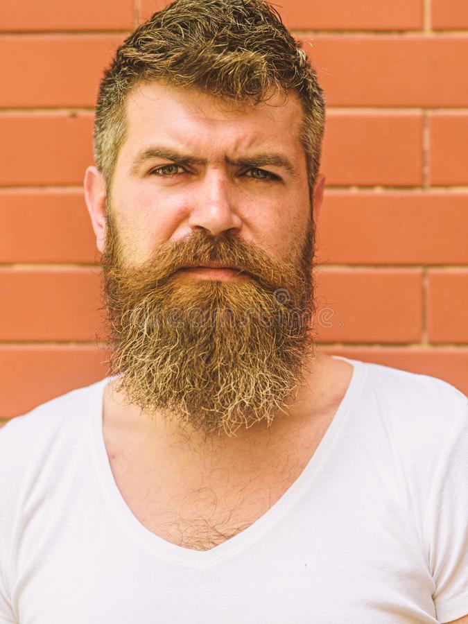 How to grow great beard. Beard grooming has never been so easy. Beard care tricks will keep your facial hair looking. Resplendent. Man urban style brutal royalty free stock image
