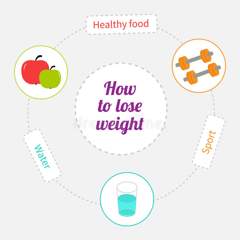 How to lose weight dash line circle infographic. Healthy food, sport, drink water. Vector illustration stock illustration