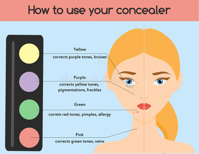 How to use concealer. Make up, cosmetics, beauty infographics for women. Skin health vector illustration