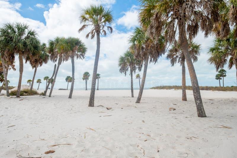 Howard Park, Tarpon Springs, FL United States - white sand beach. Howard Park, Tarpon Springs, FL United States of America - Beautiful white sand beach stock image