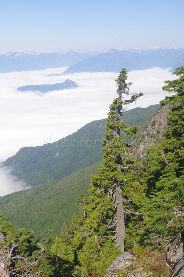 Download Howe Sound stock image. Image of nature, howe, panoramic - 33677129