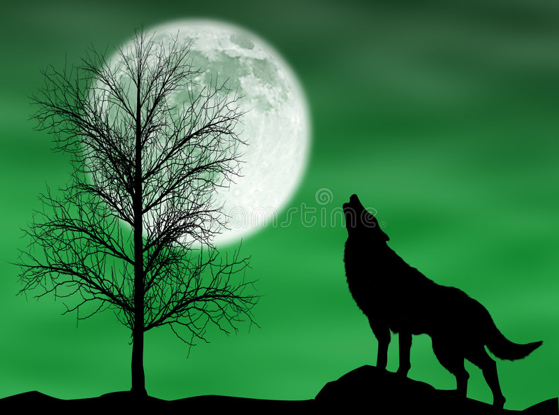 Howling wolf. In a dark and cloudy night with moon vector illustration