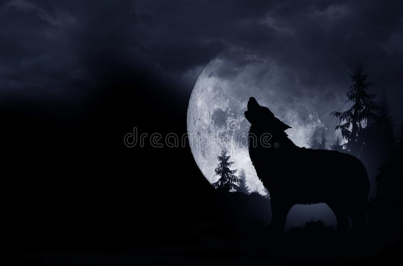 Howling Wolf Background. Howling Wolf Dark Background. Full Moon and the Wilderness vector illustration