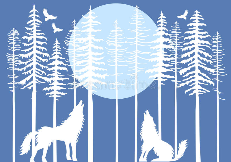 Howling wolf in fir tree forest, vector. Howling wolf in fir tree forest with blue moon, vector illustration royalty free illustration