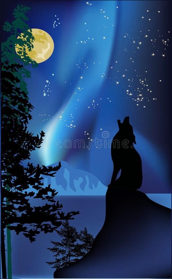 Howling wolf on rock at aurora. Illustration with howling wolf on rock stock illustration