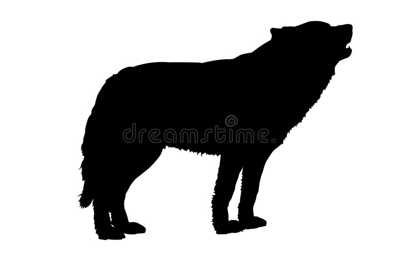 Howling Wolf Silhouette royalty free stock photos
