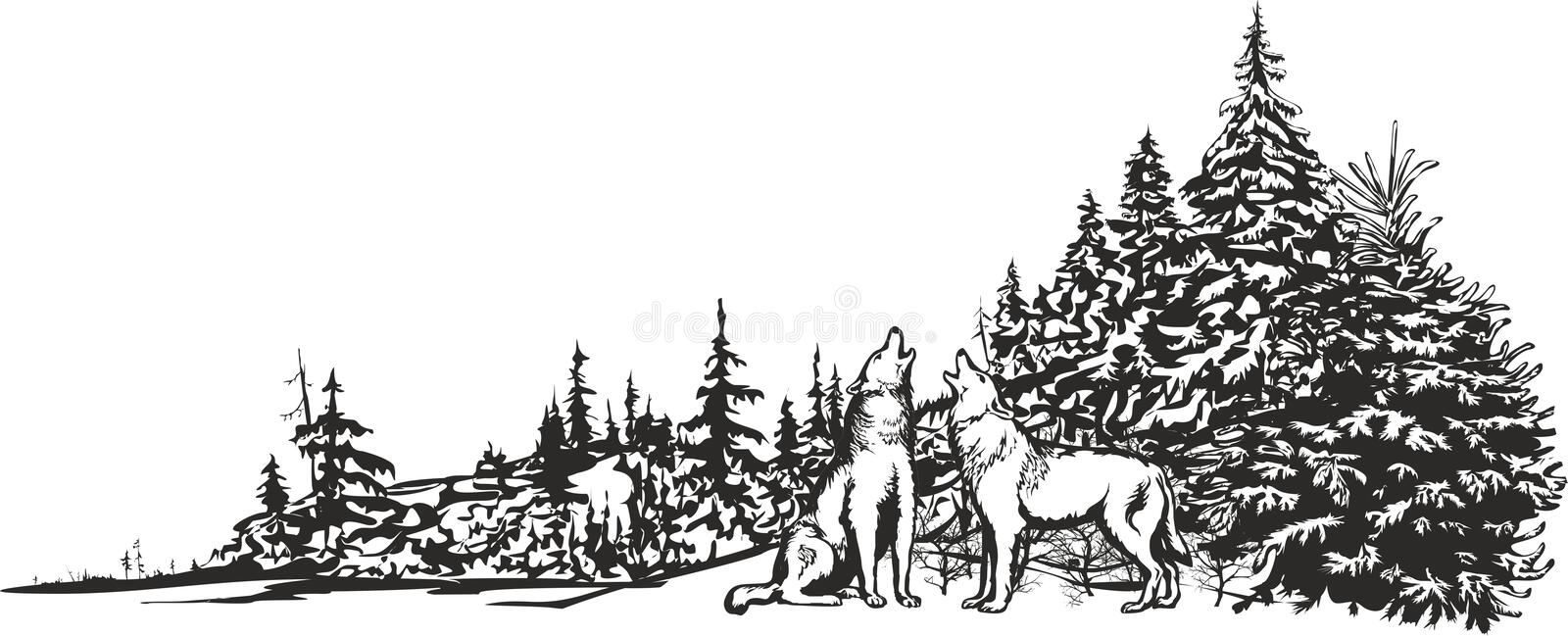 Howling wolves. Vector image of two wolves howling in the background of a winter forest stock illustration