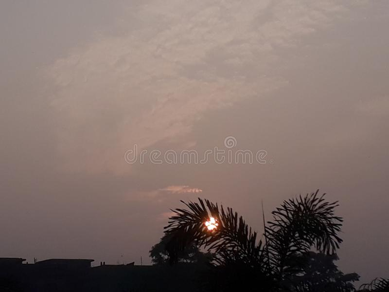 Howrah INDIA trees sky royalty free stock photos
