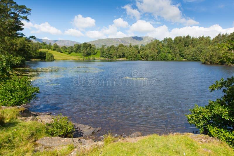 Hows de Tarn perto do parque nacional Inglaterra Reino Unido do distrito do lago Hawkshead em um dia de verão ensolarado bonito fotografia de stock