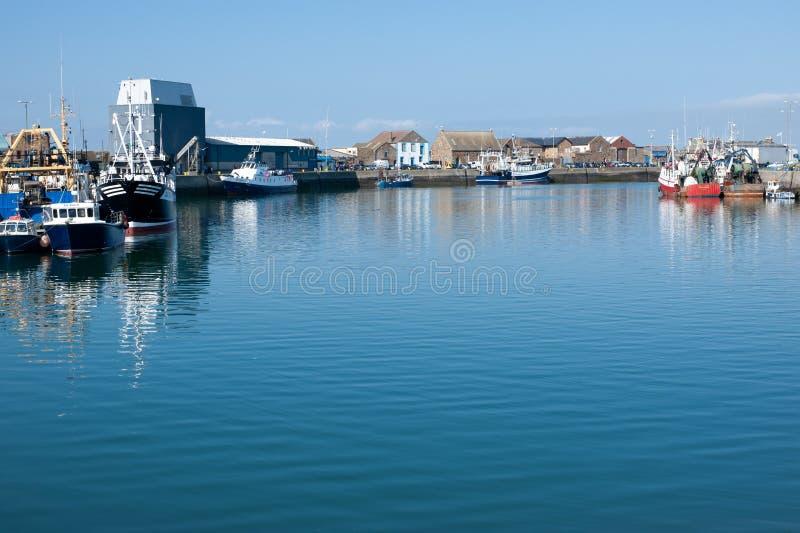 Howth港口,都伯林,爱尔兰 免版税库存图片
