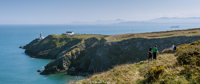Howth, Provincie Fingal, Ierland De middag lichte Lente van 2017 royalty-vrije stock foto's