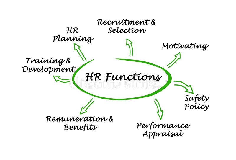 HR Functions. Important functions of HR department stock illustration