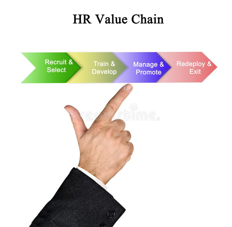 HR Value Chain stock image