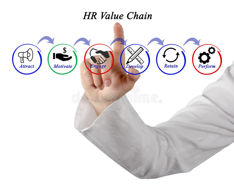 HR Value Chain. Presenting diagram of HR Value Chain royalty free stock photography