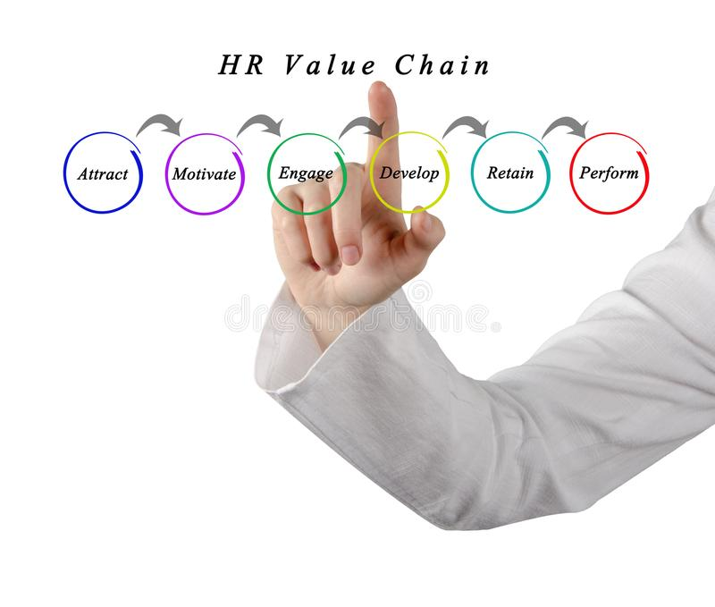 HR Value Chain. Woman presenting HR Value Chain stock image