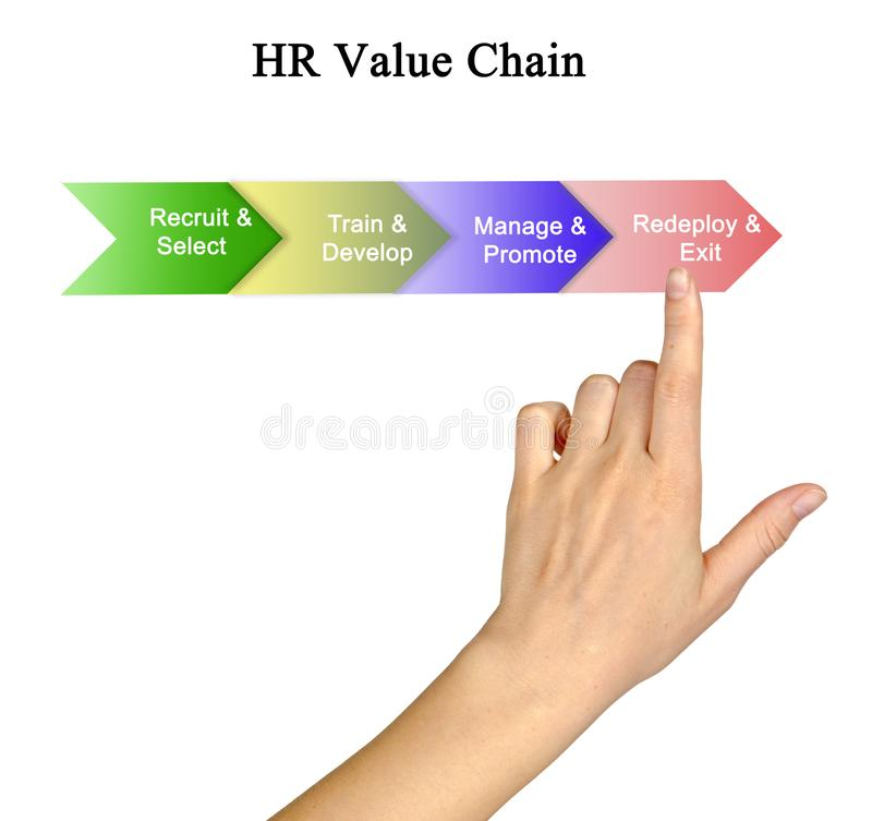 HR Value Chain royalty free stock photos