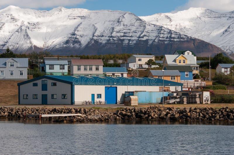 Hrisey村庄在冰岛 库存照片
