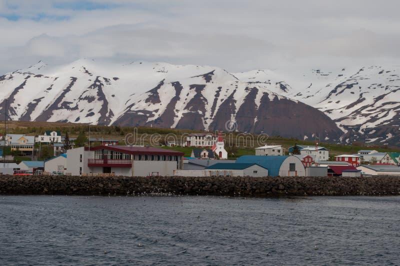 Hrisey镇在冰岛 免版税库存图片