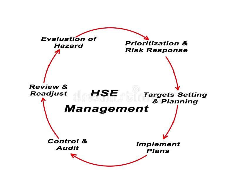 Hse-Management lizenzfreie abbildung