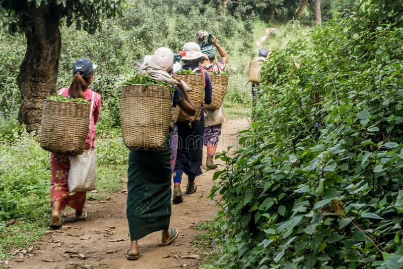 Hsipaw, Myanmar lizenzfreies stockbild
