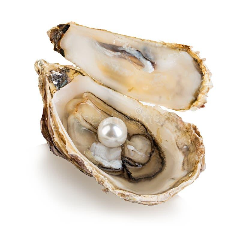 Huître avec des perles d'isolement sur le blanc photographie stock libre de droits