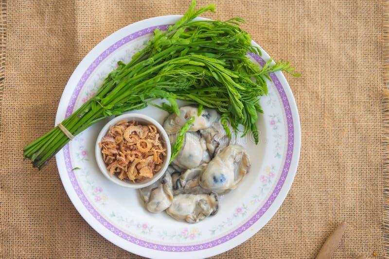 Huître fraîche d'un plat avec le légume photographie stock libre de droits