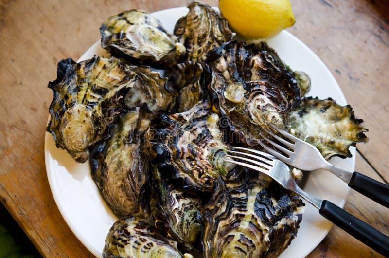 huîtres images libres de droits
