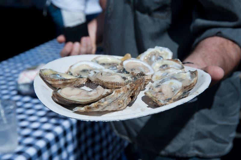 Huîtres d'une plaque photo libre de droits
