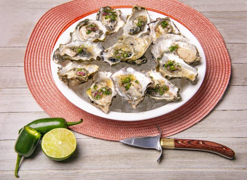 Huîtres fraîches à la sauce jalapeno & citron mignonette image libre de droits