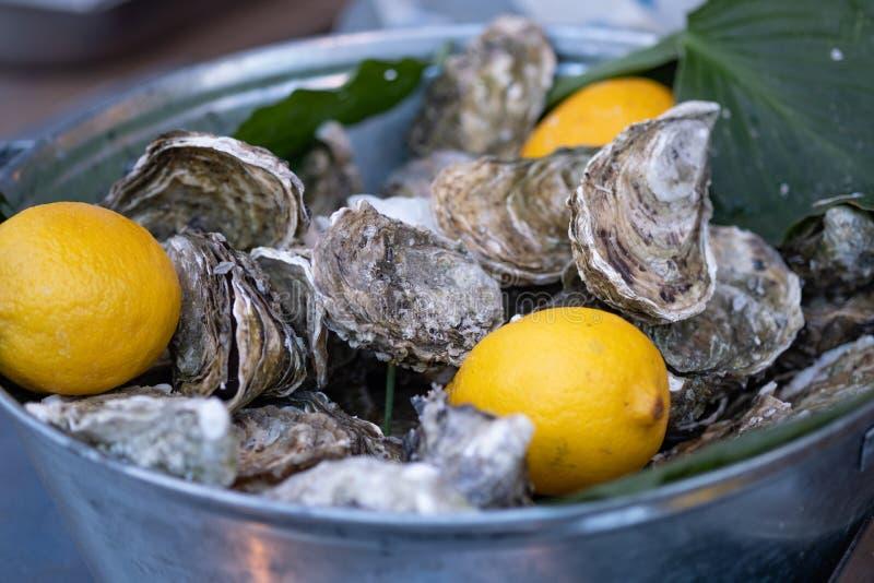 Huîtres fraîches avec les tranches du citron en glace d?licatesse de restaurant Plat d'huîtres d'eau de mer photographie stock libre de droits