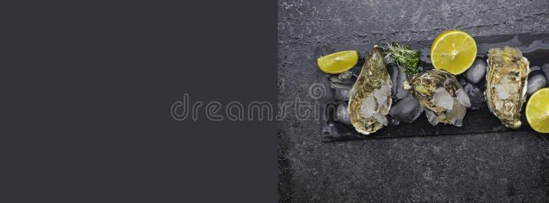 huîtres fraîches crues sur glace avec tranches de citron sur ardoise de pierre, mollusque de l'océan Atlantique photo libre de droits