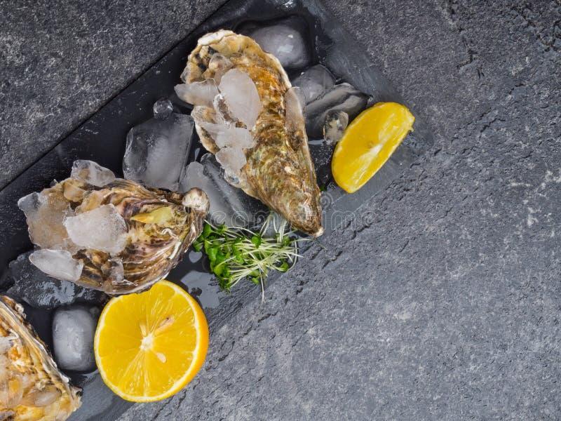 huîtres fraîches crues sur glace avec tranches de citron sur ardoise de pierre, mollusque de l'océan Atlantique image stock