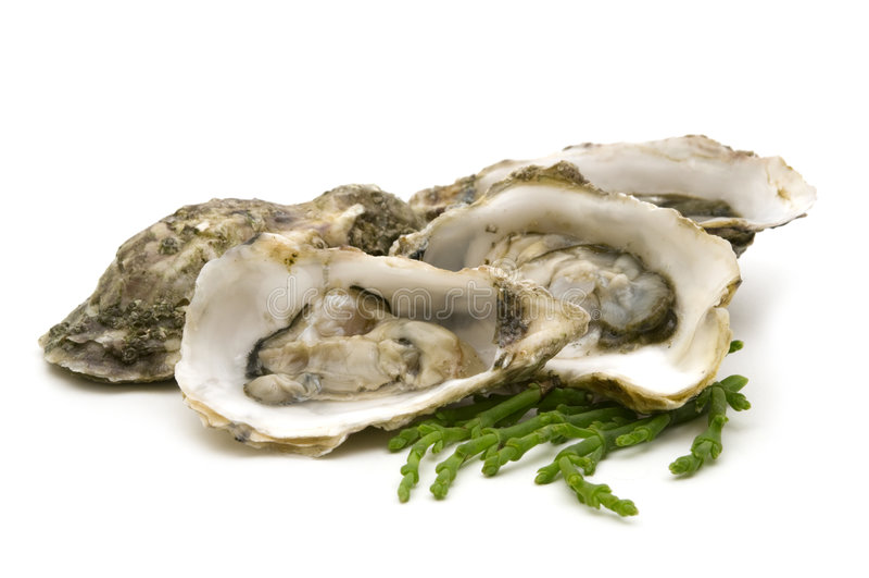 huîtres ouvertes photographie stock libre de droits