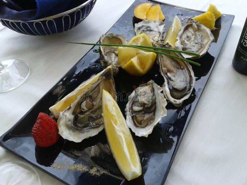 Huîtres, sammer, mer, Italie photographie stock libre de droits
