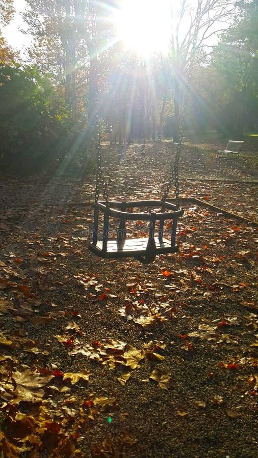 Huśtawka w parku od Florence miasta w jesieni z opposite słońcem obraz stock
