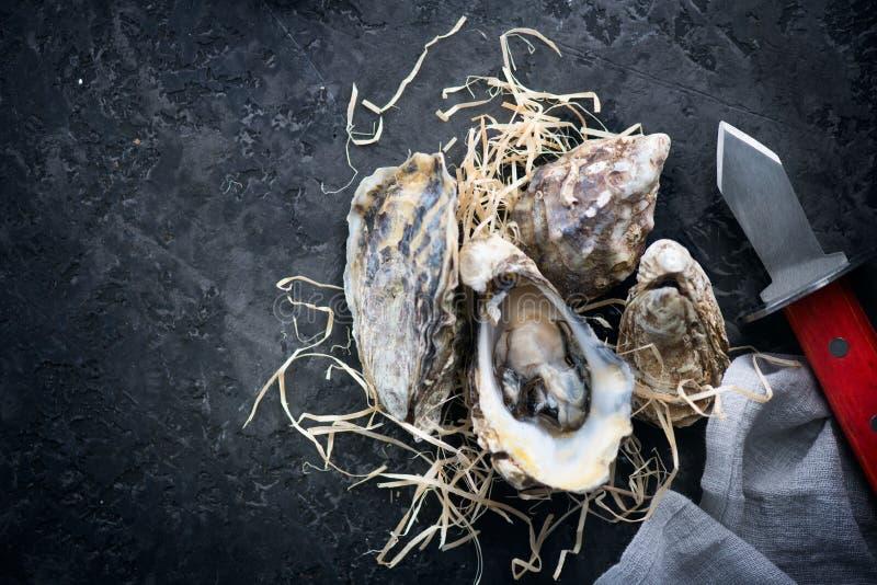 hu?tre Huîtres fraîches avec le plan rapproché de couteau Huîtres sur le fond foncé d'ardoise Nourriture gastronome flatlay photos libres de droits