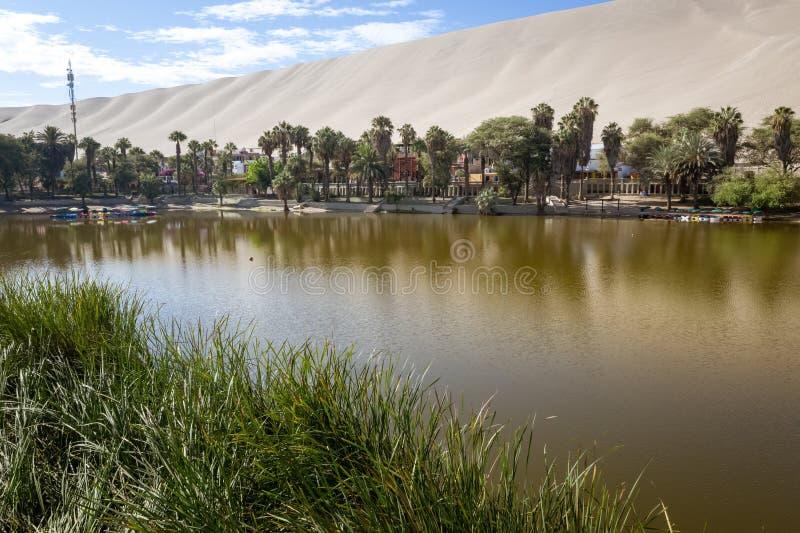 Huacachina oaza w Ica, Peru zdjęcie royalty free
